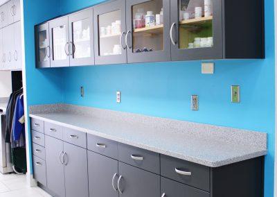 Lab Cabinets 1