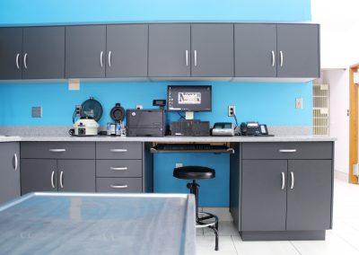 Lab Cabinets 12