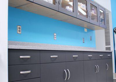 Lab Cabinets 14