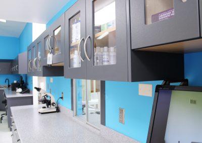 Lab Cabinets 4
