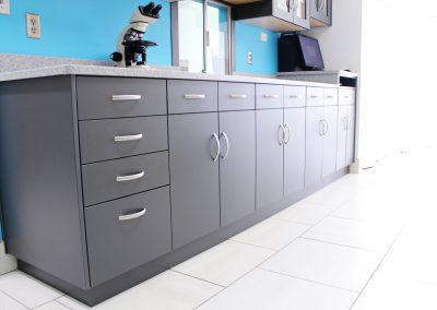 Lab Cabinets 7