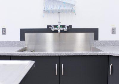Lab Cabinets_Sink
