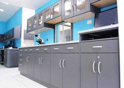 Lab cabinets 5